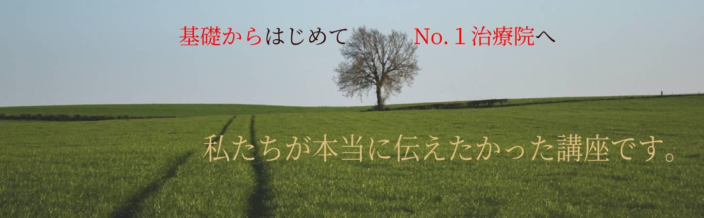 大樹と二筋の道